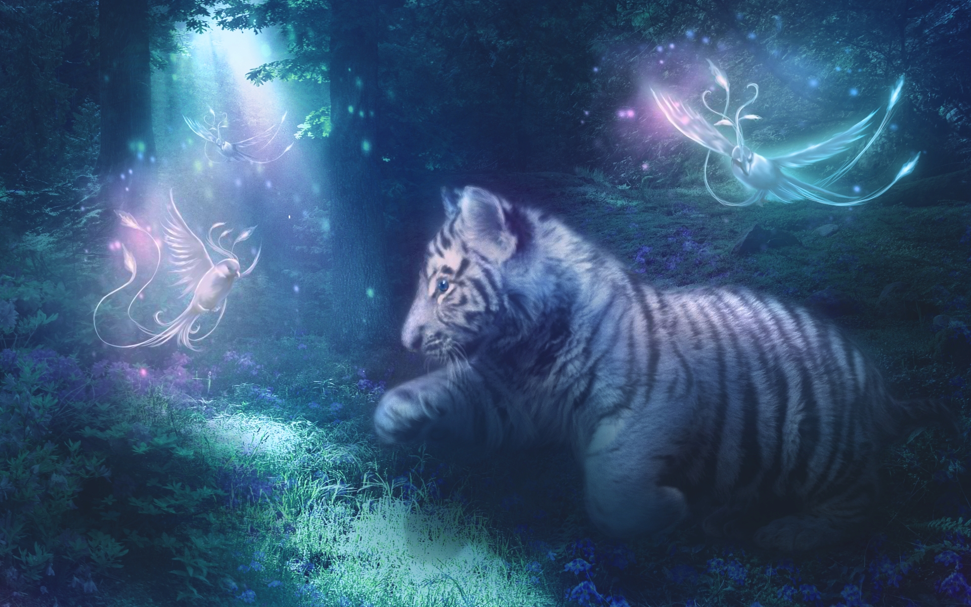Tiger wallpapers pictures images tiger widescreen wallpaper voltagebd Images