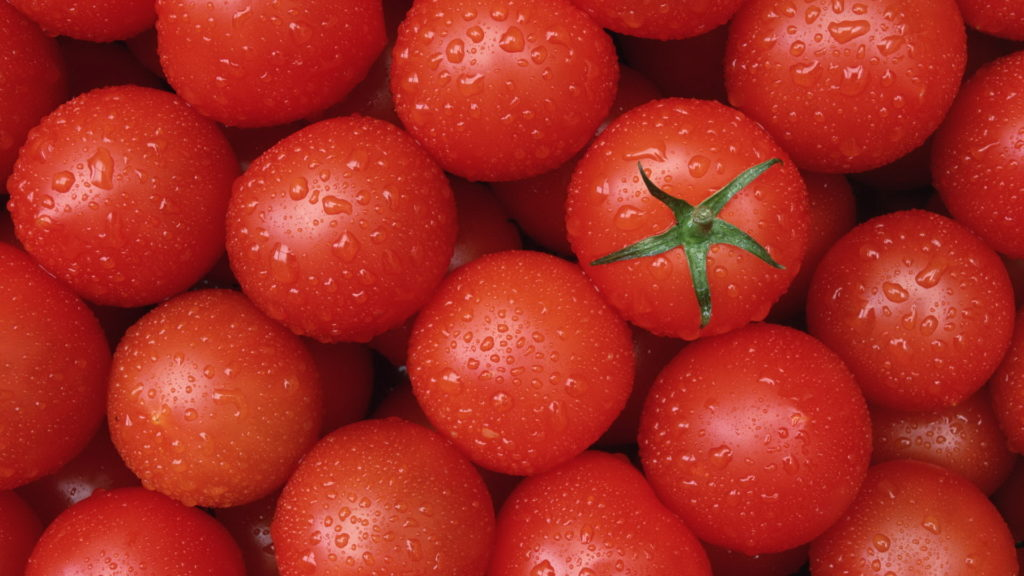 Tomato Full HD Wallpaper