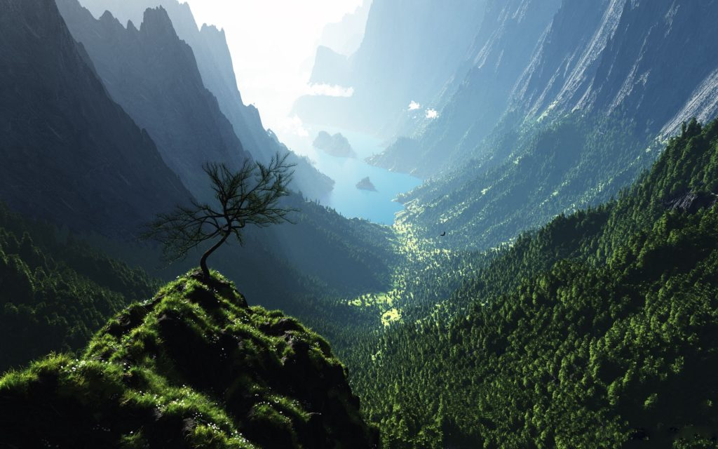 Valley Widescreen Wallpaper