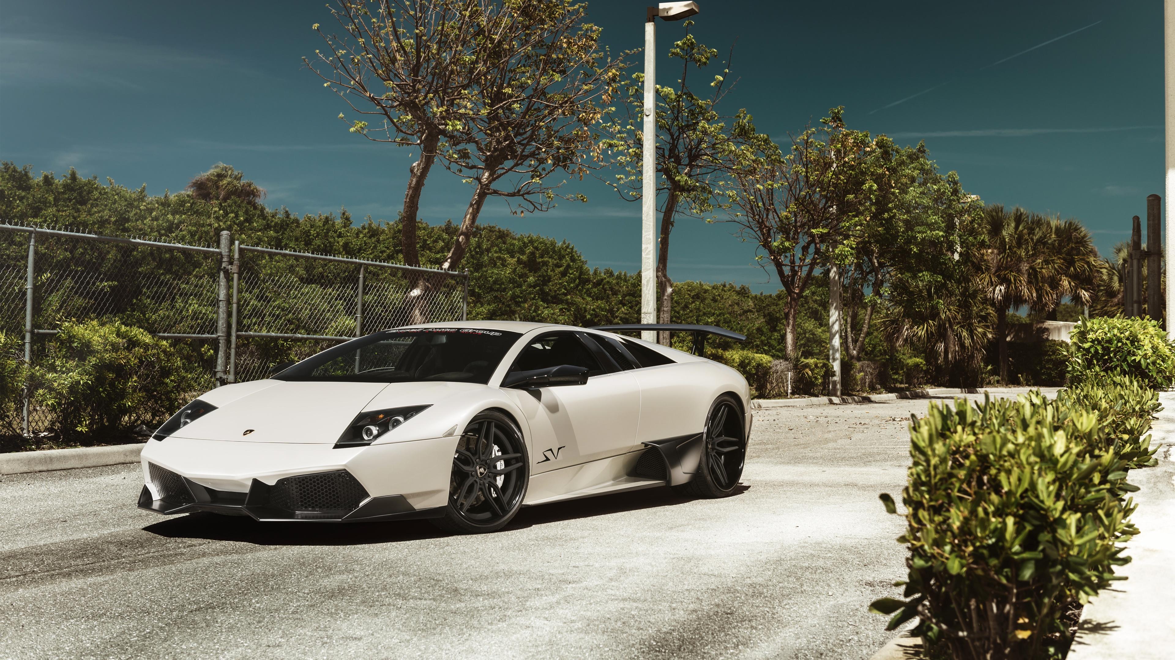 Lamborghini Murcielago Wallpapers Pictures Images