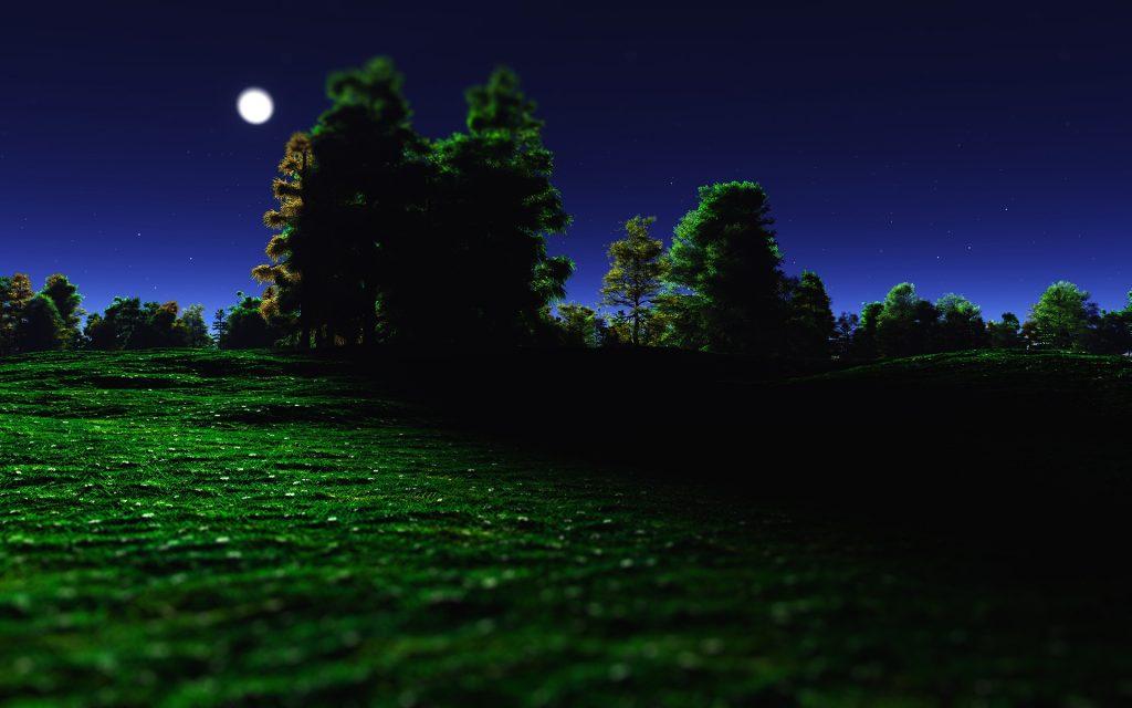 Landscape HD Widescreen Background