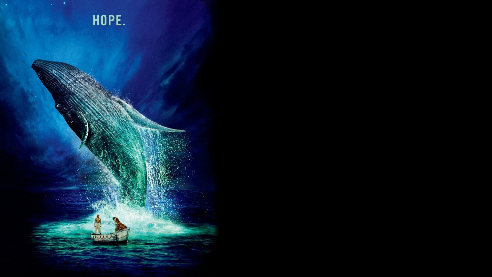 life of pi pictures images life of pi full hd