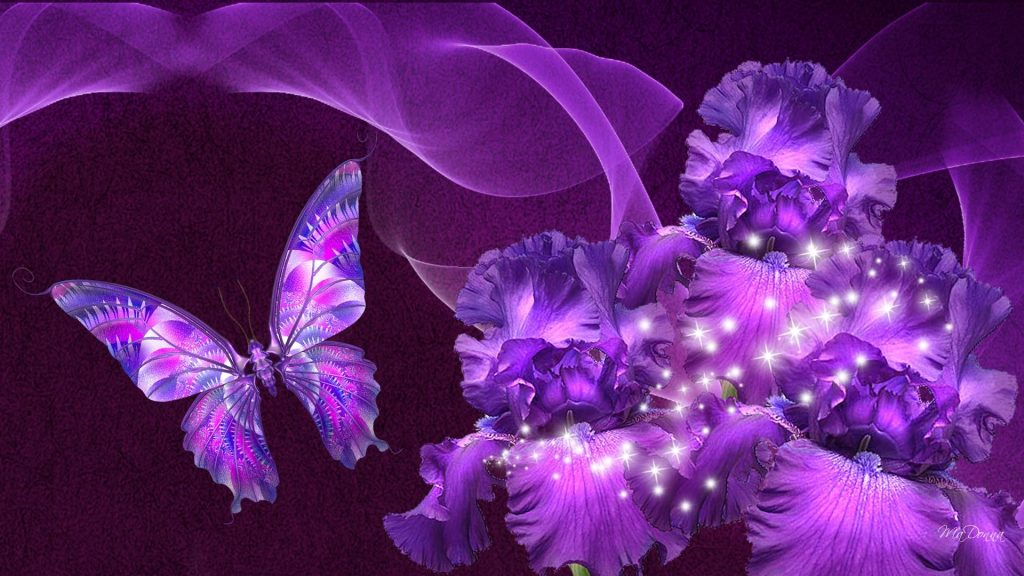 Purple Full HD Wallpaper