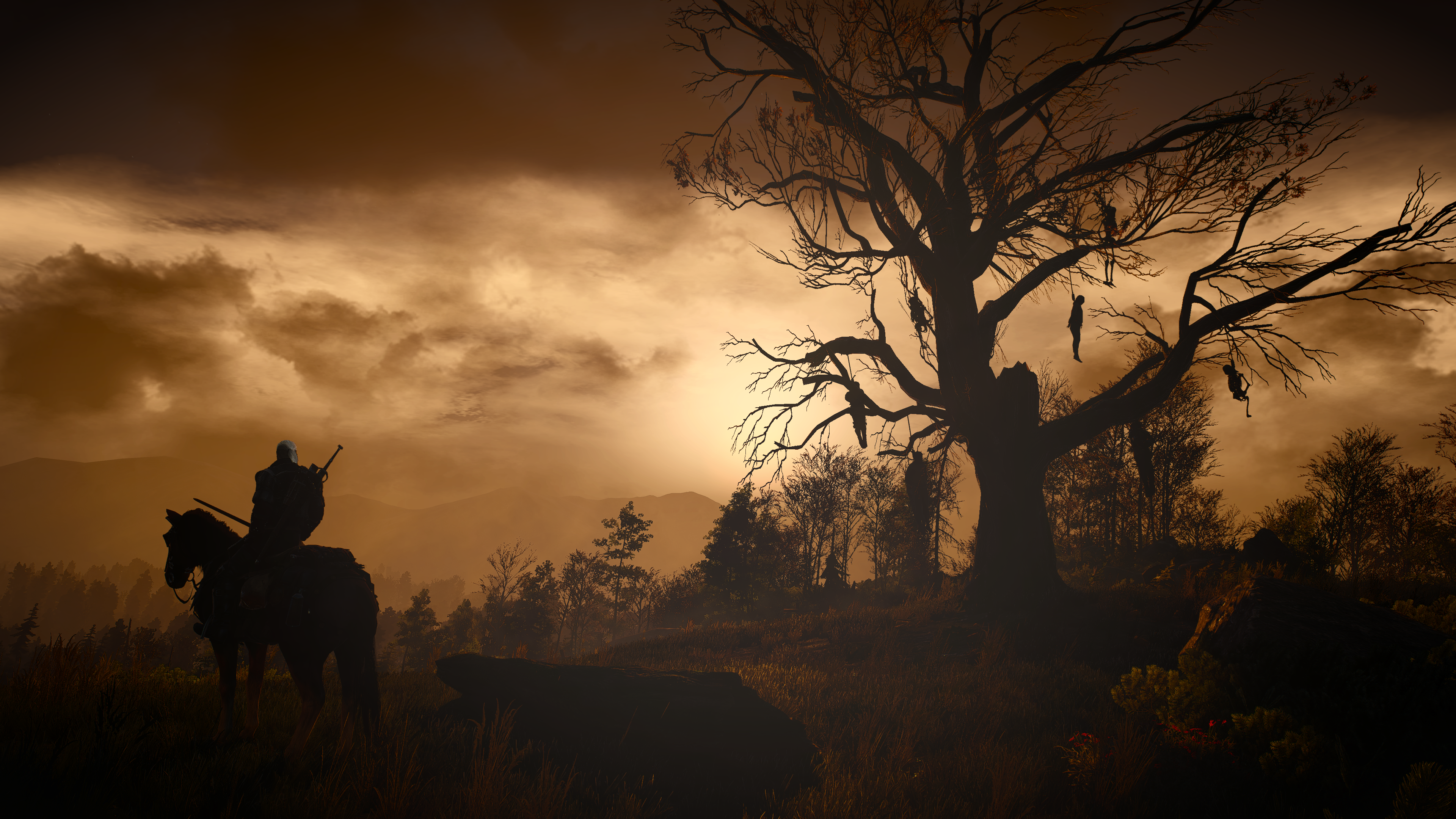 The witcher 3 wild hunt wallpapers pictures images - Hd wilderness wallpapers ...