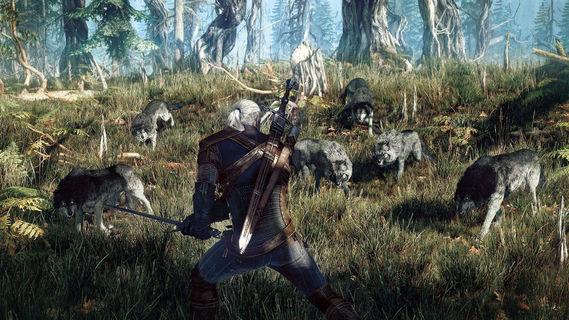 The Witcher 3: Wild Hunt Wallpapers, Pictures, Images