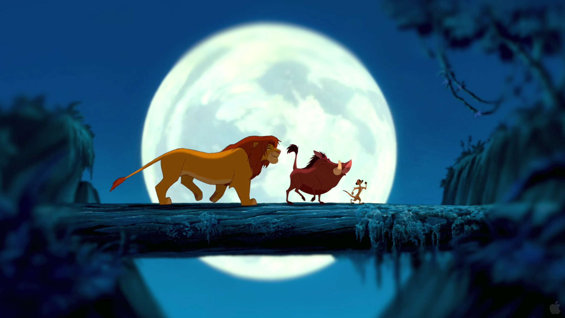 The Lion King Wallpapers Pictures Images