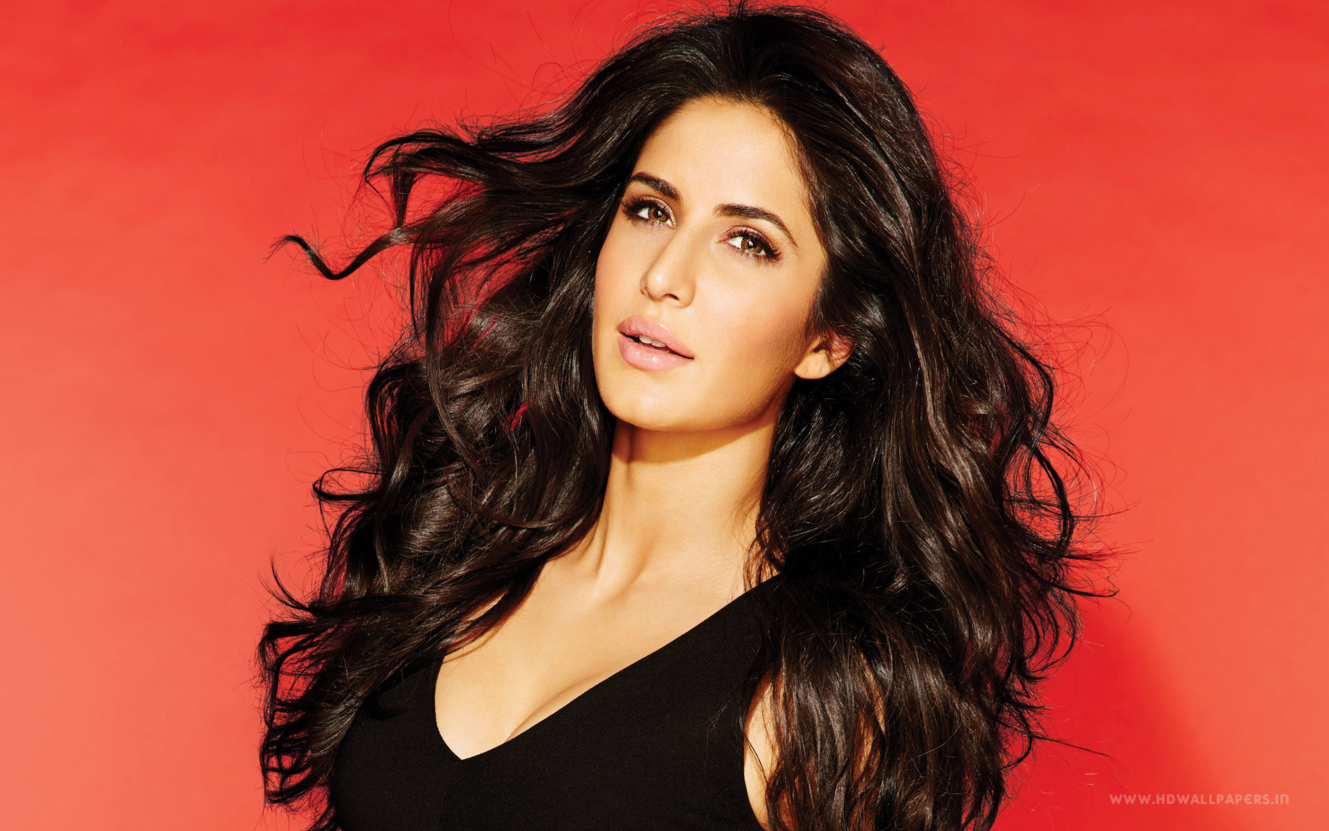Katrina Kaif Wallpapers Pictures Images