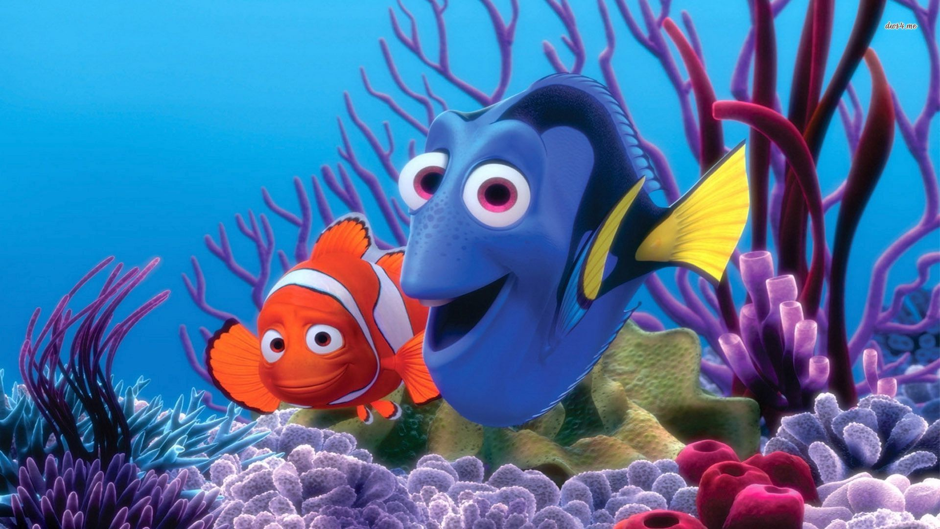 It's just a graphic of Fan Free Finding Nemo
