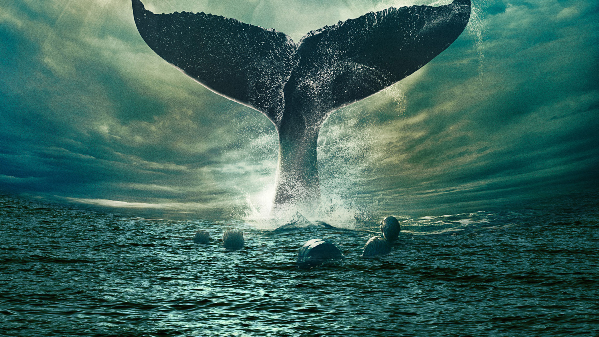 In The Heart Of The Sea Wallpapers Pictures Images