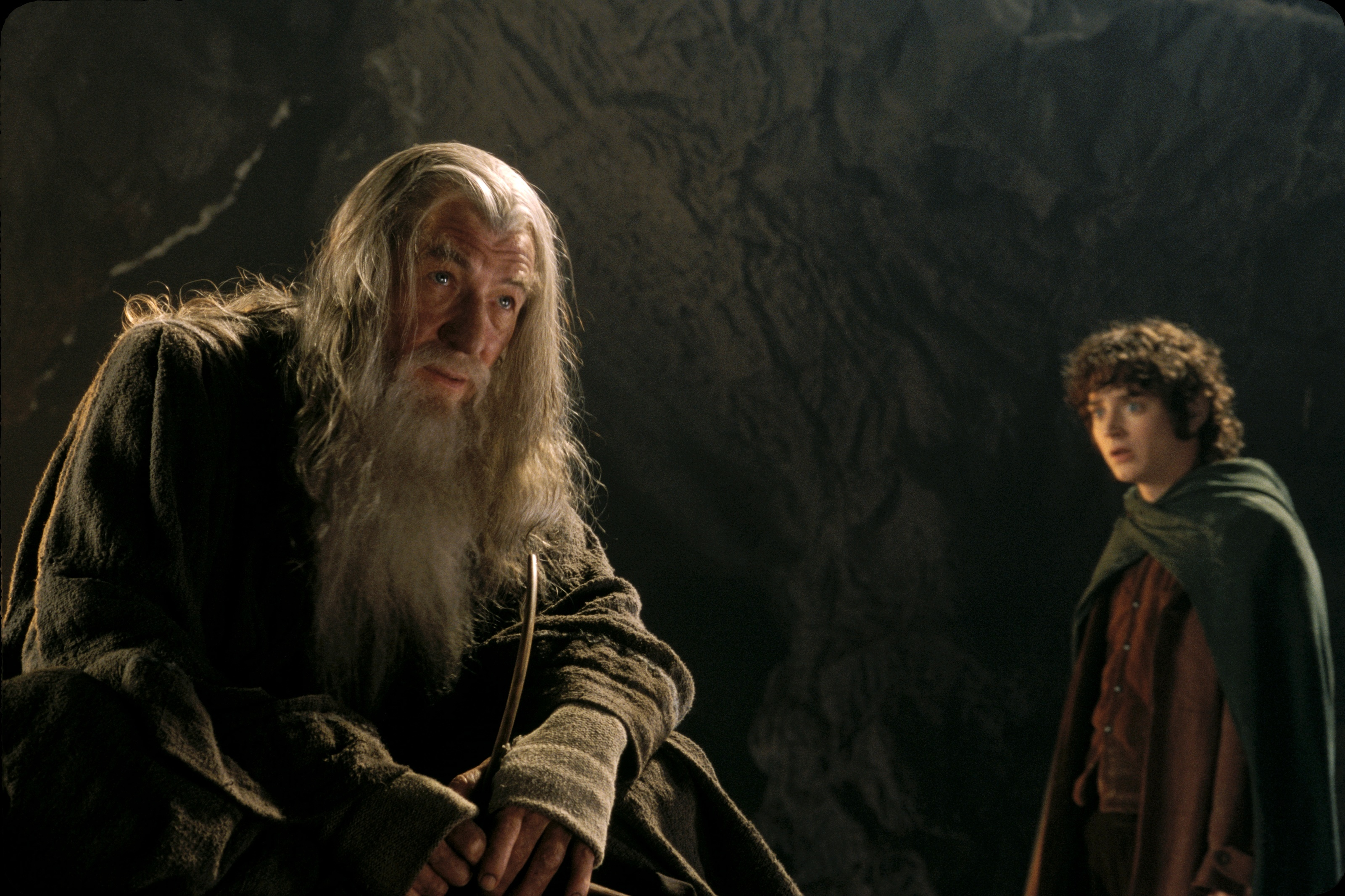 The Lord of the Rings The Fellowship of the Ring - Full Cast & Crew - IMDb