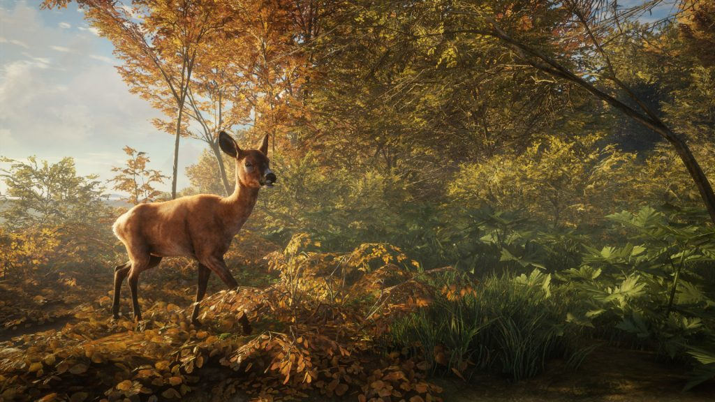 TheHunter: Call Of The Wild Full HD Wallpaper