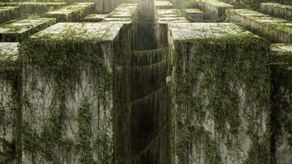 The Maze Runner Full HD Wallpaper