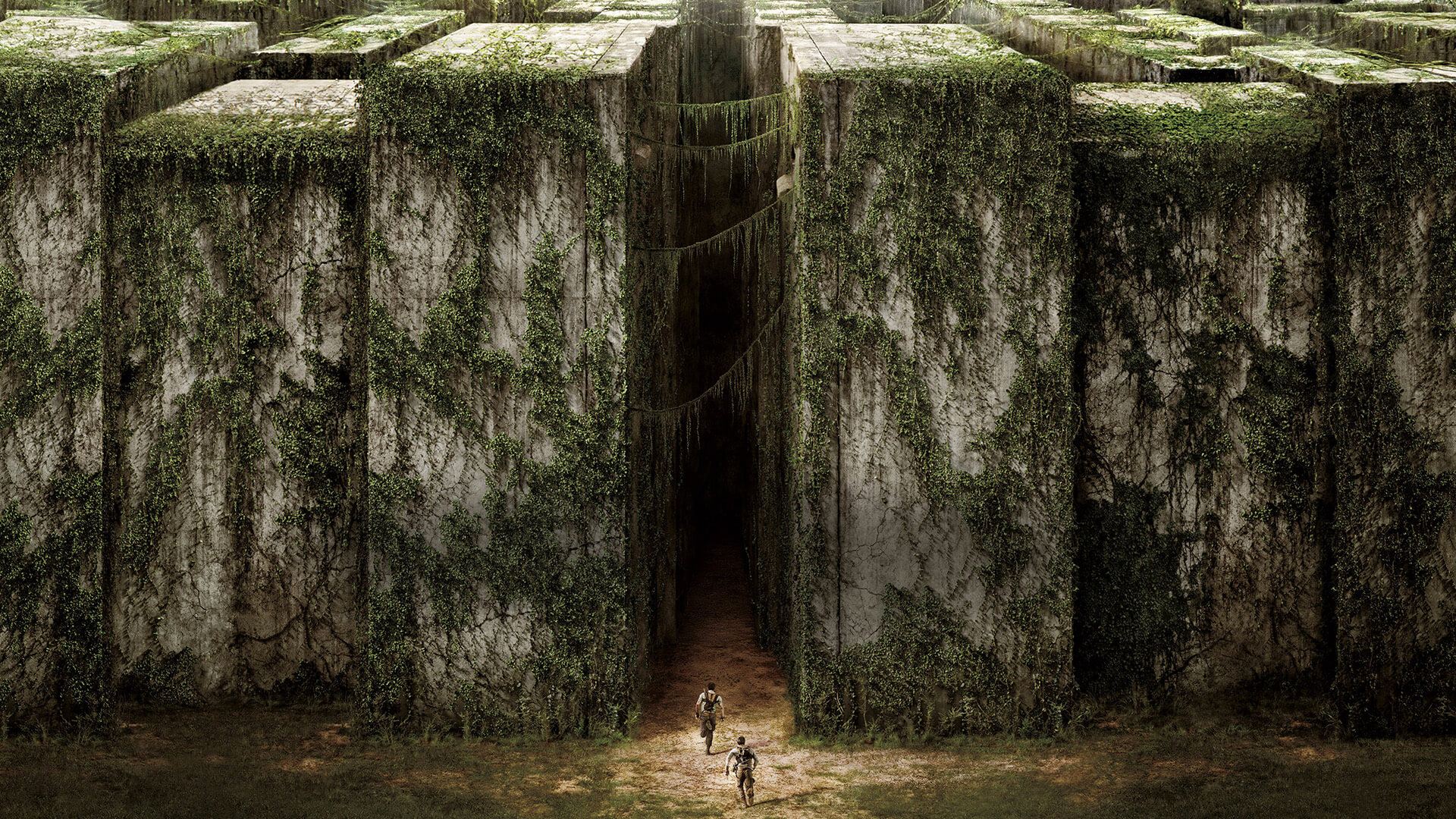 The Maze Runner Wallpapers Pictures Images