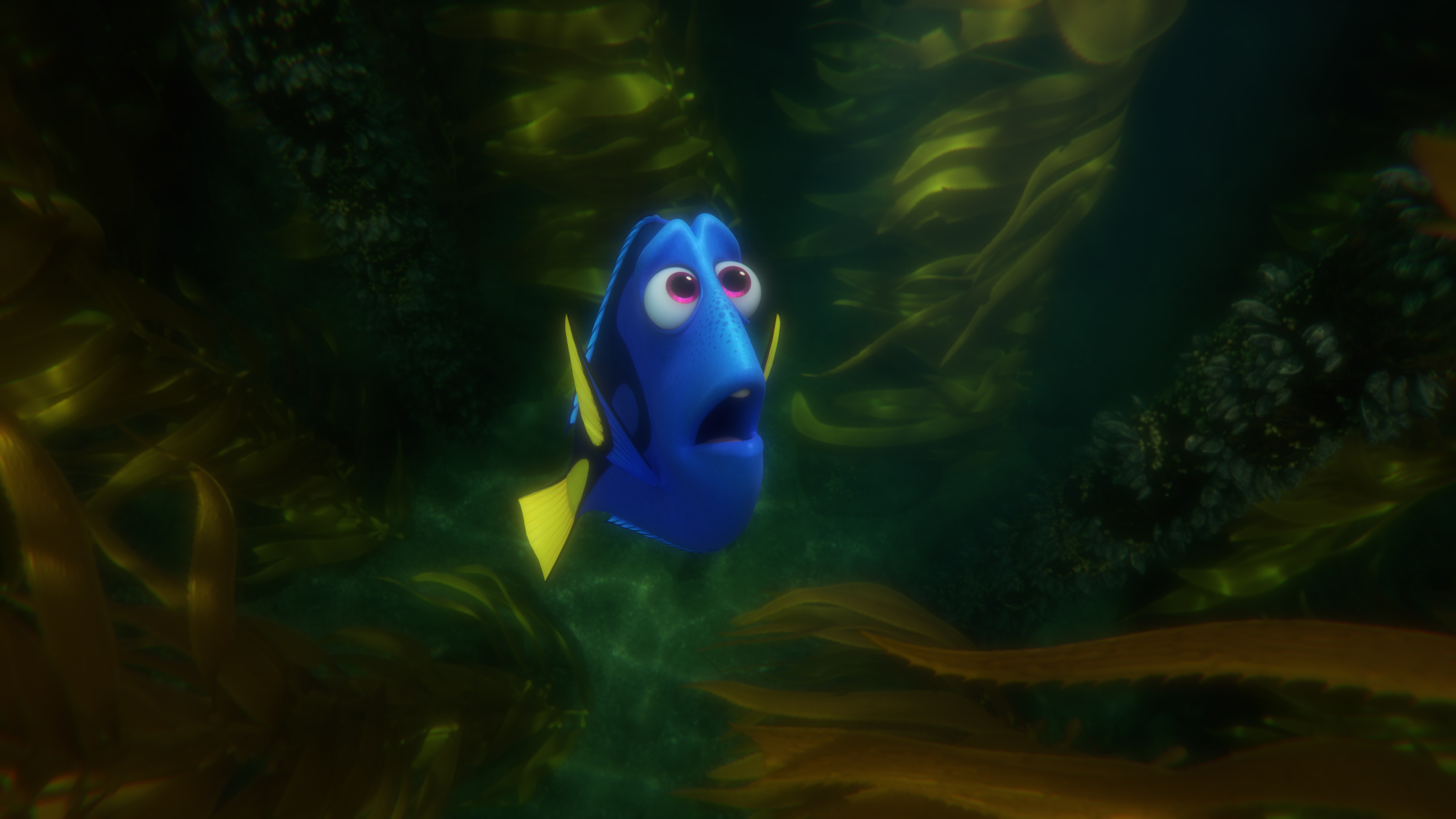 Finding Dory Wallpapers Pictures Images