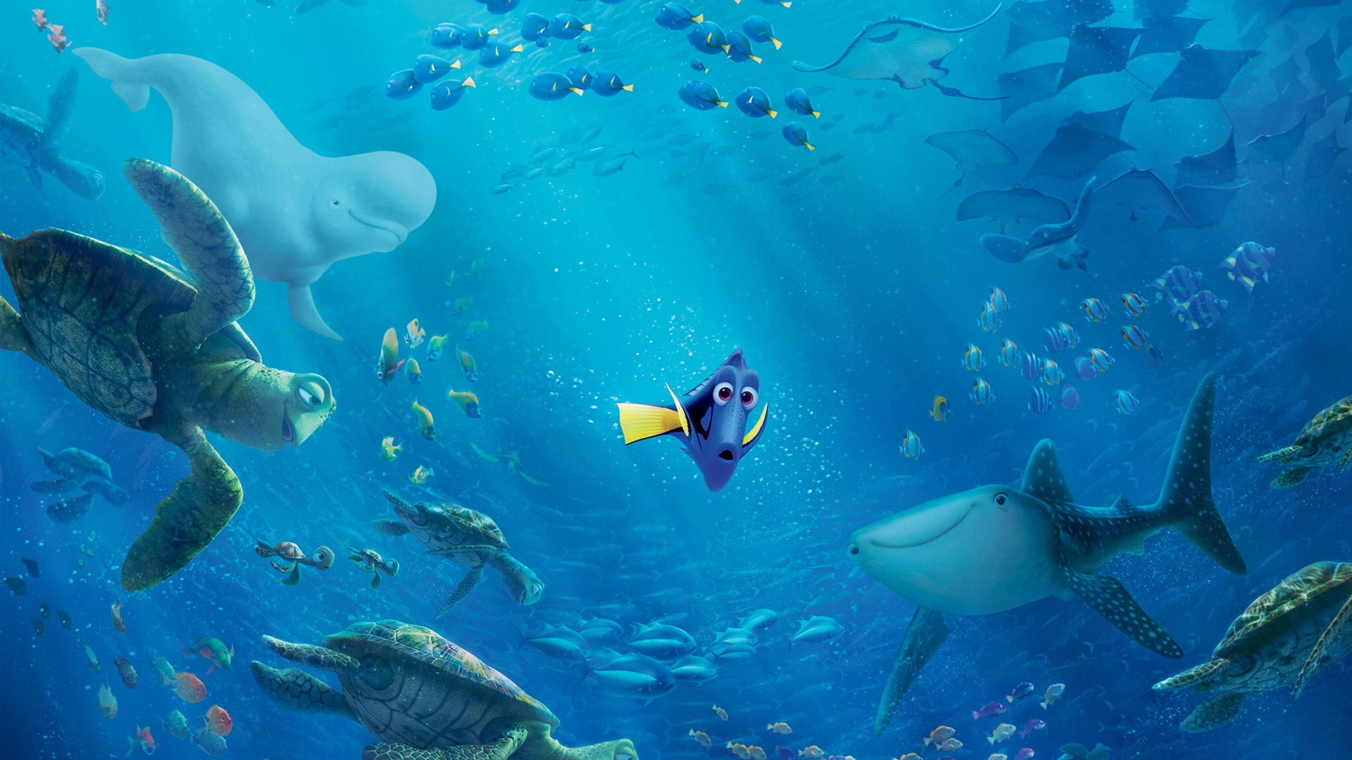 Finding Dory Wallpapers, Pictures, Images