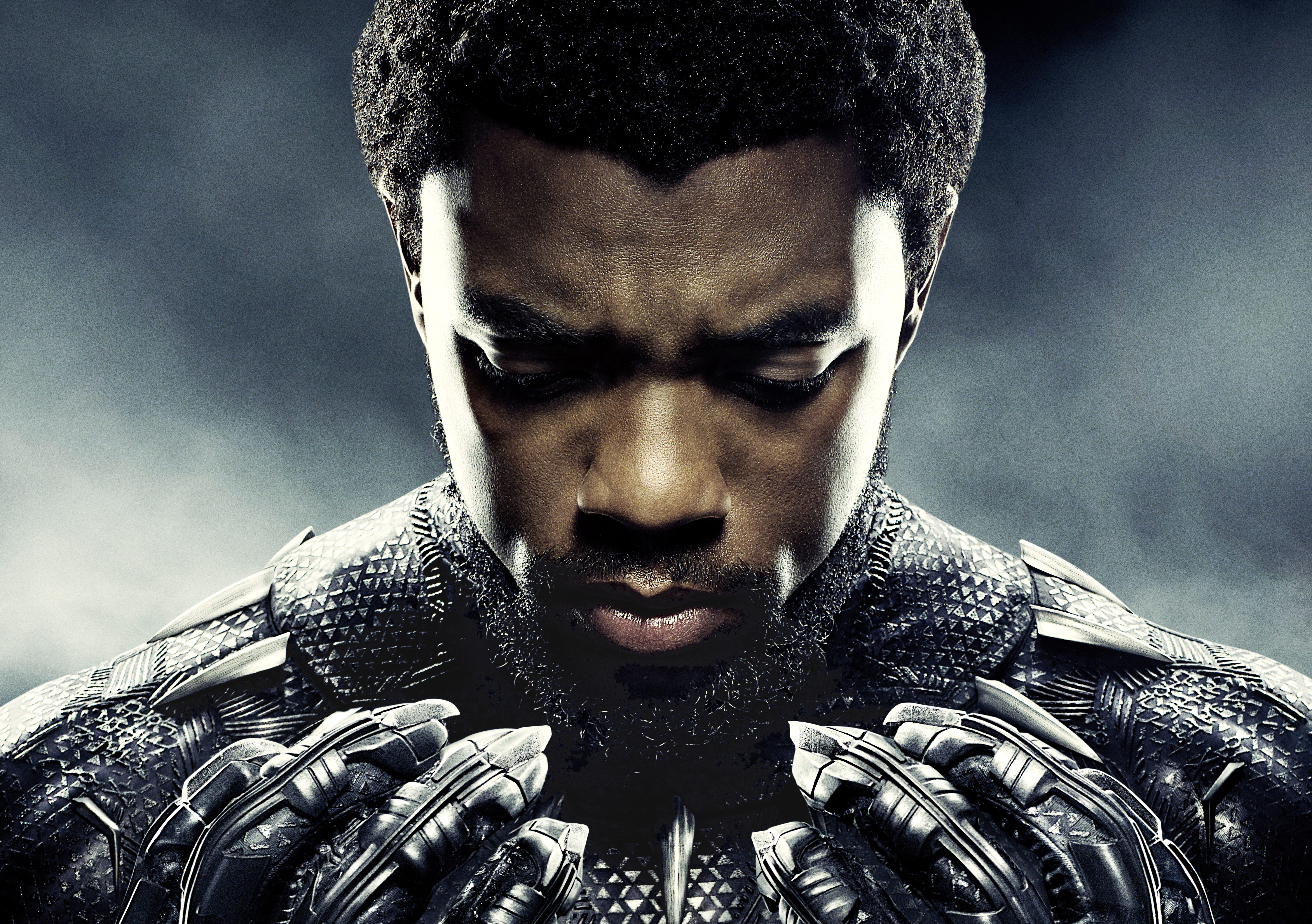Black Panther Hd Backgrounds Pictures Images