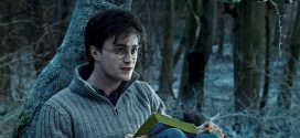 Harry Potter And The Deathly Hallows: Part 1 HD Wallpapers