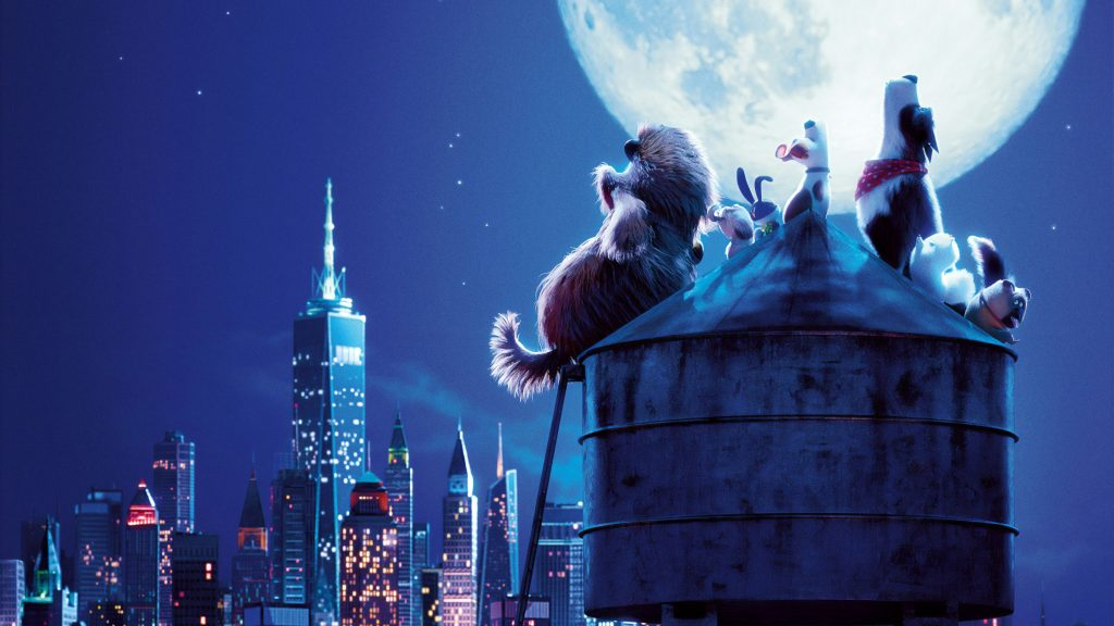 The Secret Life of Pets 2 Quad HD Wallpaper