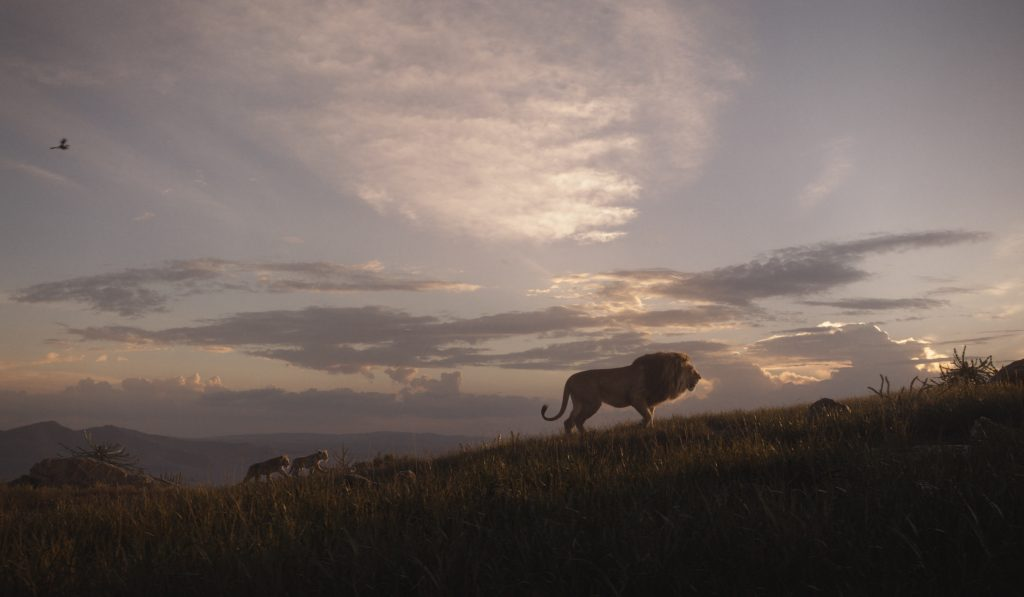 The Lion King (2019) Wallpaper