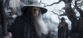 The Hobbit: The Desolation Of Smaug HD Wallpapers